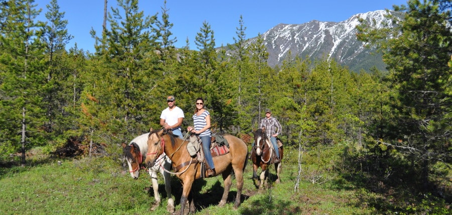 Horseback Riding in West Glacier