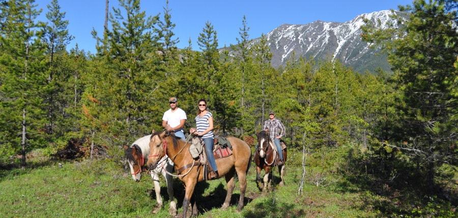 Horseback Riding in West Glacier