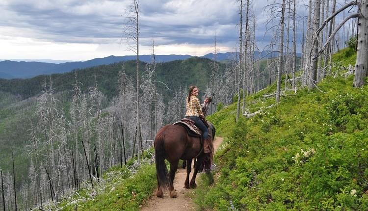 Apgar Trail Rides
