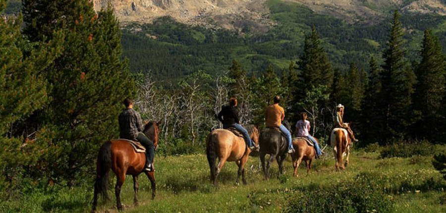 Horseback Riding in Glacier