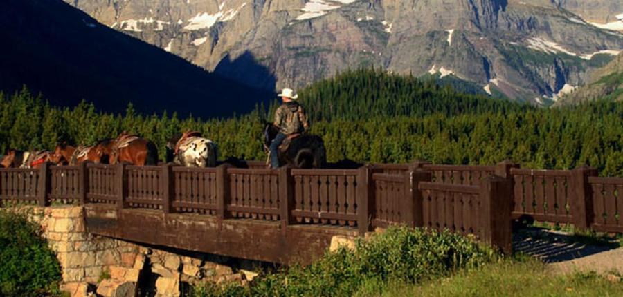 Many Glacier Trail Rides